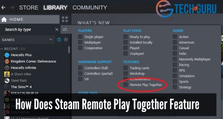 How Does Steam Remote Play Together Feature